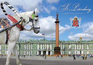 СПб. Дворцовая площадь и лошадь